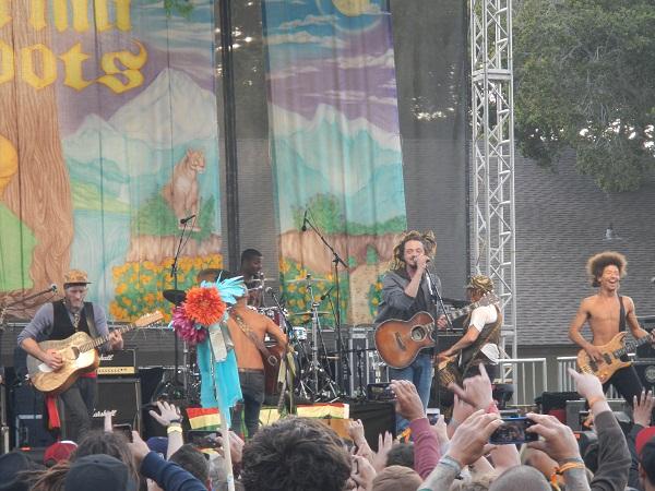 Cali Roots 2014